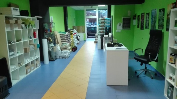 growbarato-oviedo-600x337