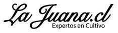 online-logo-1479477517