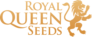 royal_queed_seeds