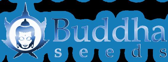 logobuddhahorizontalazul2012-05