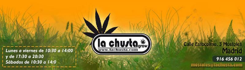 lachusta_cabecera