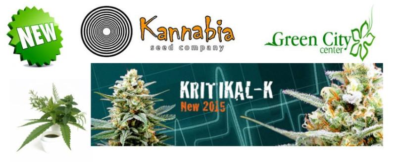 kannabia-semillas-marihuana