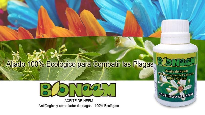 BIONEEM-2