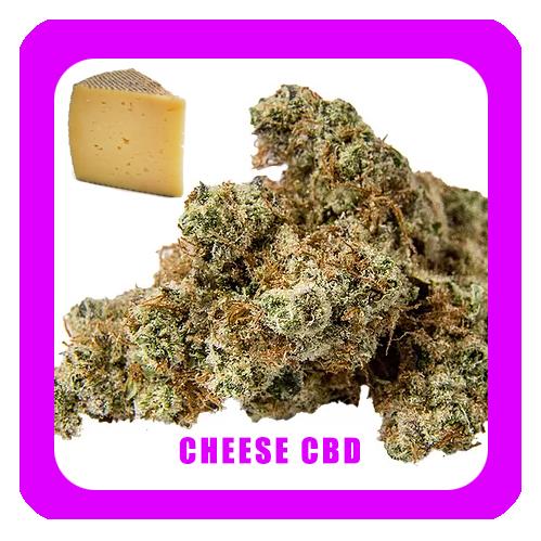 Cheese-CBD