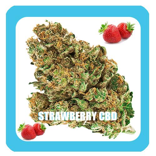 Strawberry-CBD-smellt