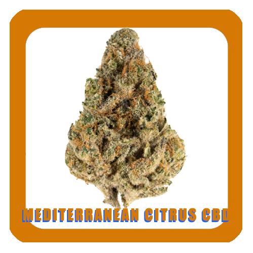 mediterranean-citrus-slymer-cbd